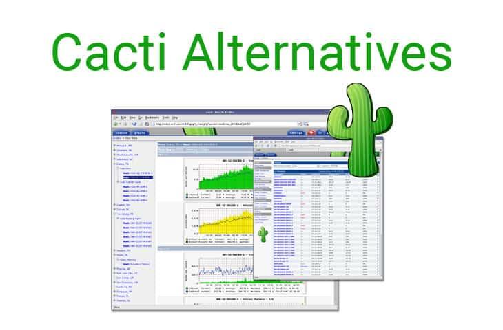 alternatives to cacti