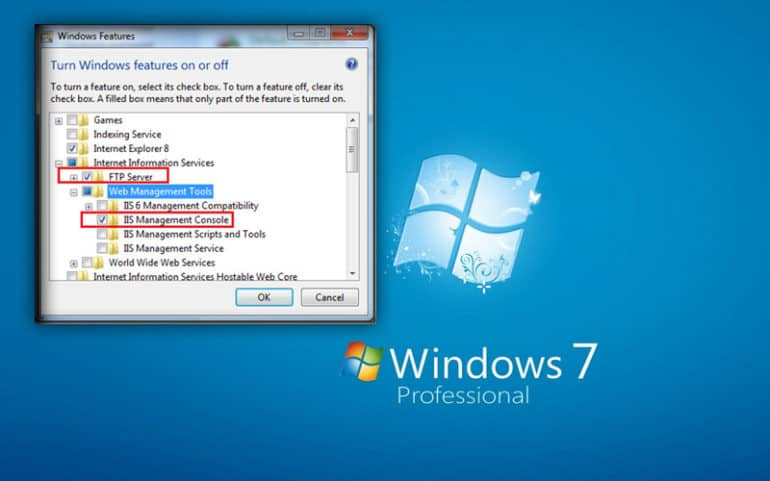 Windows 7 FTP Server Installation Guide